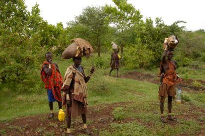 Bodi on the way to market