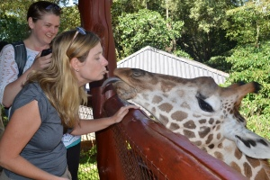 Giraffe..