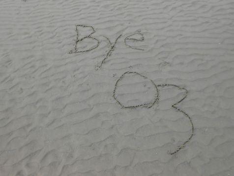 Bye Oz
