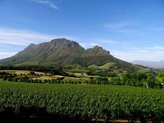 Wine region