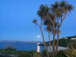 Moonlit Cornwall